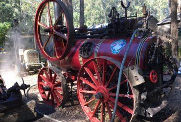 Steam Fair 1st-7th July 2021