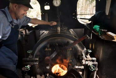 Timbertown Steam Train Experience