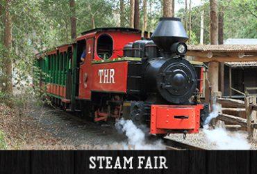 Annual Steam Fair 2017