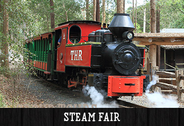 Annual Steam Fair 2017