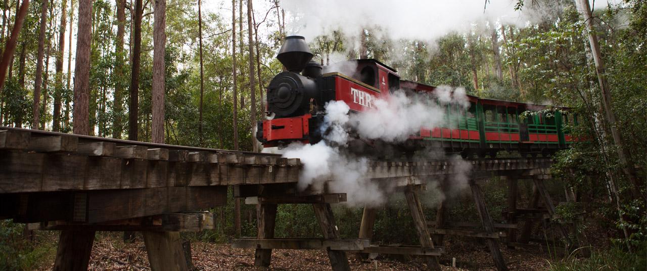 Timbertown Steam Train Banner